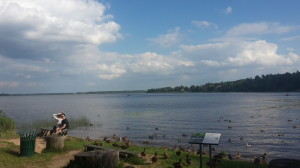 Jezero u Mežapark